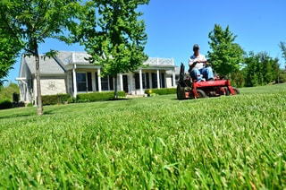 A picture of lawn care in columbia md
