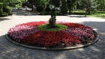 A picture of a beautiful round mulch bed in columbia md